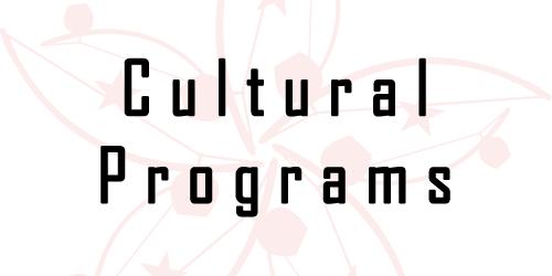 Capoeira Cultural Activities